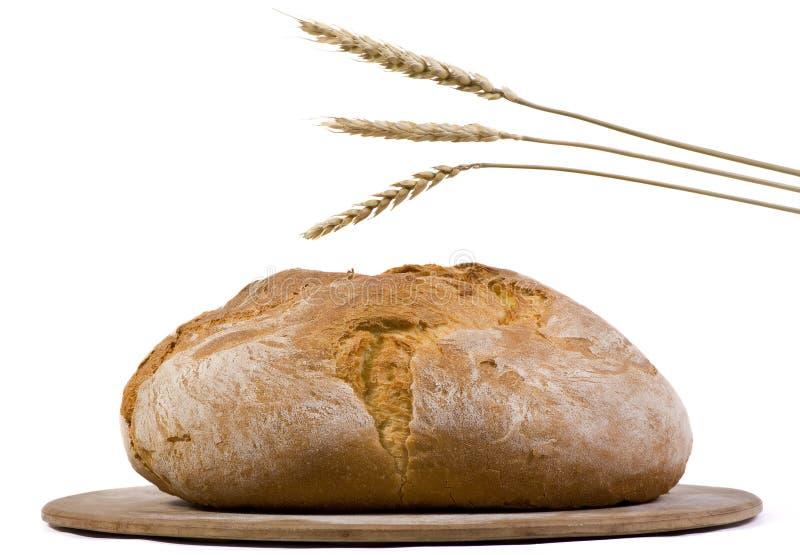 O naco do pão com trigo isolou 2 imagens de stock