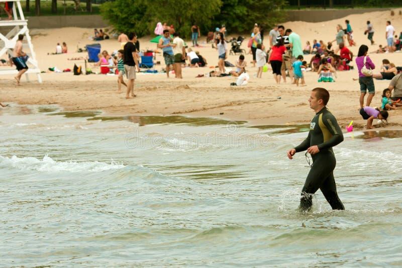 O nadador no Wetsuit prepara-se para nadar o lago Michigan foto de stock royalty free