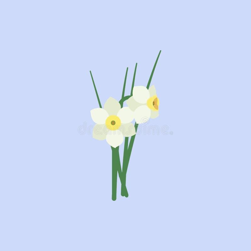 O narciso amarelo floresce o ícone branco da cor Elemento do ícone bonito colorido das flores para apps móveis do conceito e da W ilustração do vetor
