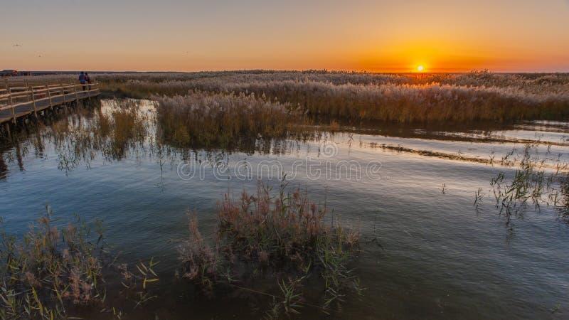 O nascer do sol em Juyanhai fotografia de stock royalty free