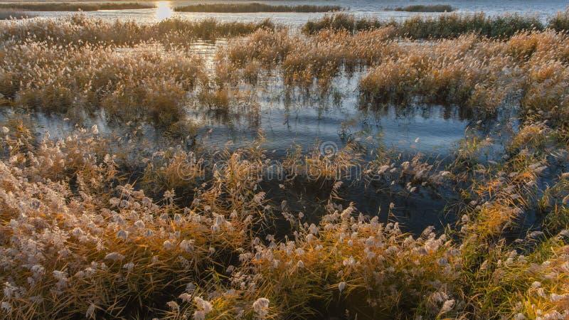 O nascer do sol em Juyanhai imagem de stock royalty free