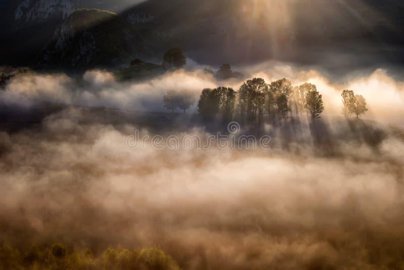 O nascer do sol magnífico no Transylvania County em Romênia com névoa e o sol irradiam foto de stock royalty free