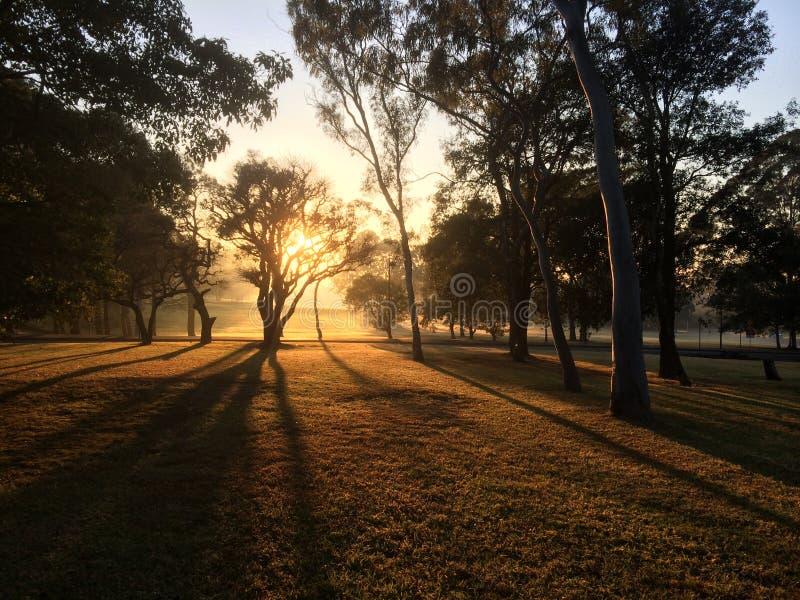 O nascer do sol na universidade de Macquarie foto de stock