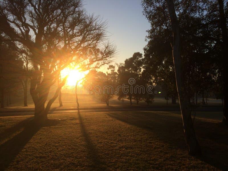 O nascer do sol na universidade de Macquarie fotografia de stock
