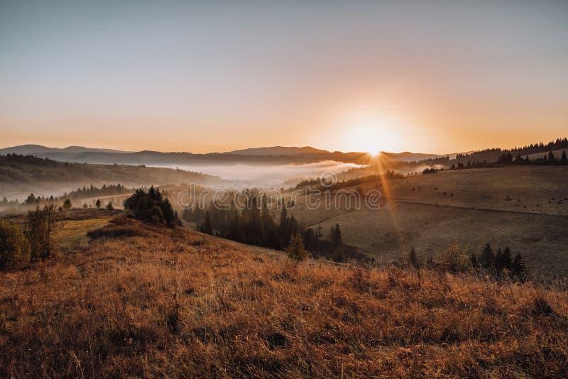 O nascer do sol nas montanhas Carpathian ajardina imagens de stock royalty free