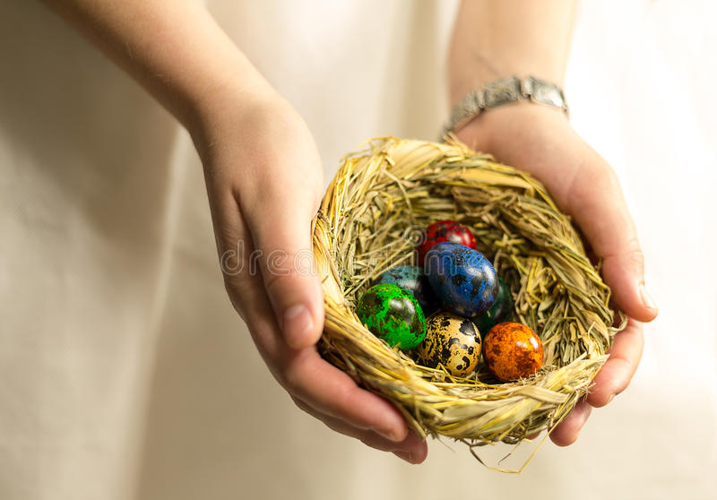 O ninho com os ovos pintados em cores diferentes encontra-se na palma da mão foto de stock
