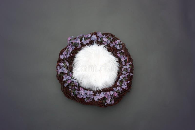 O ninho da fantasia com fundamento macio e alfazema decorativa floresce em g fotografia de stock