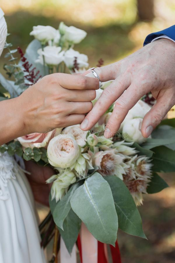 O noivo coloca o anel no bride& x27; mão de s Close up da foto fotografia de stock