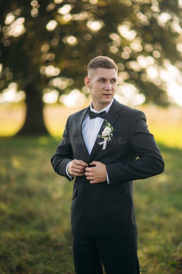 O noivo faz um botão em seu revestimento estar no meio do campo no fundo da árvore grande imagem de stock