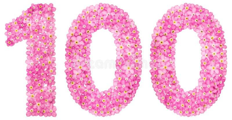 O numeral árabe 100, cem, do miosótis cor-de-rosa floresce fotos de stock