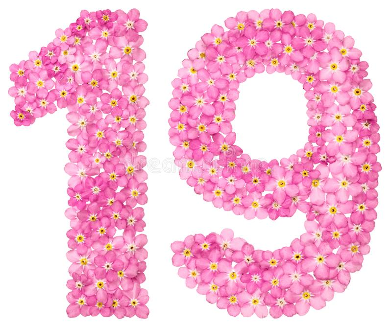 O numeral árabe 19, dezenove, do miosótis cor-de-rosa floresce, é ilustração stock