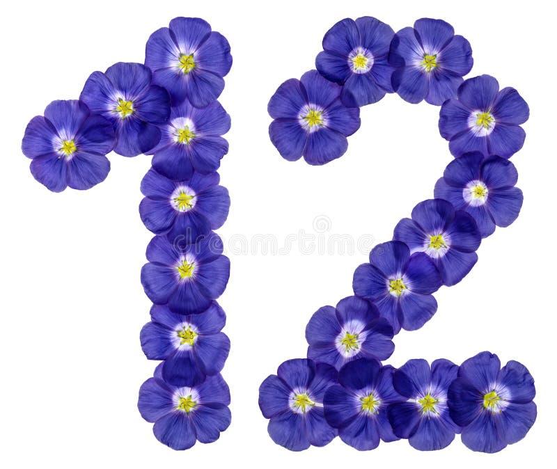 O numeral árabe 12, doze, das flores azuis do linho, isolou o imagem de stock
