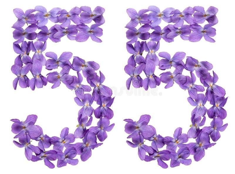 O numeral árabe 55, meio a meio, das flores da viola, isolou o fotos de stock