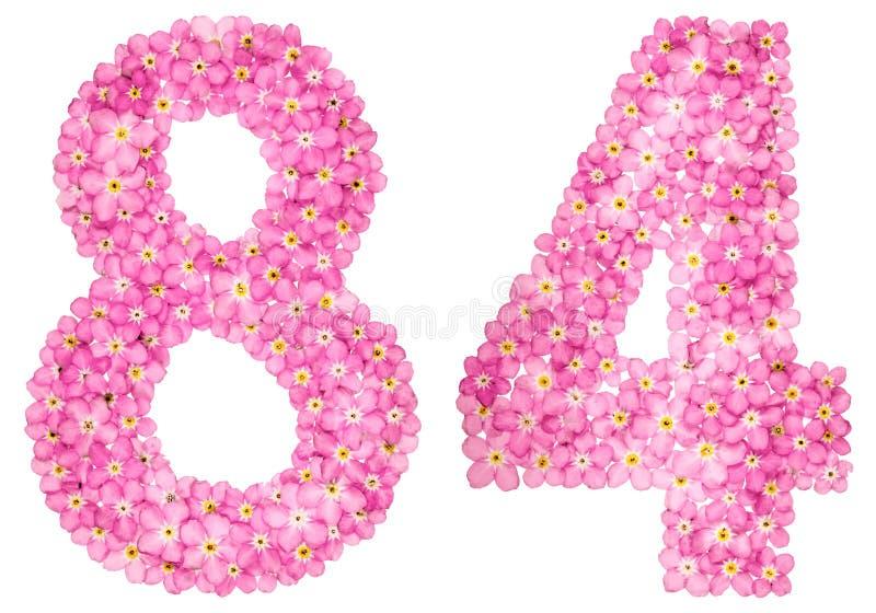 O numeral árabe 84, oitenta e quatro, do miosótis cor-de-rosa floresce, fotografia de stock royalty free