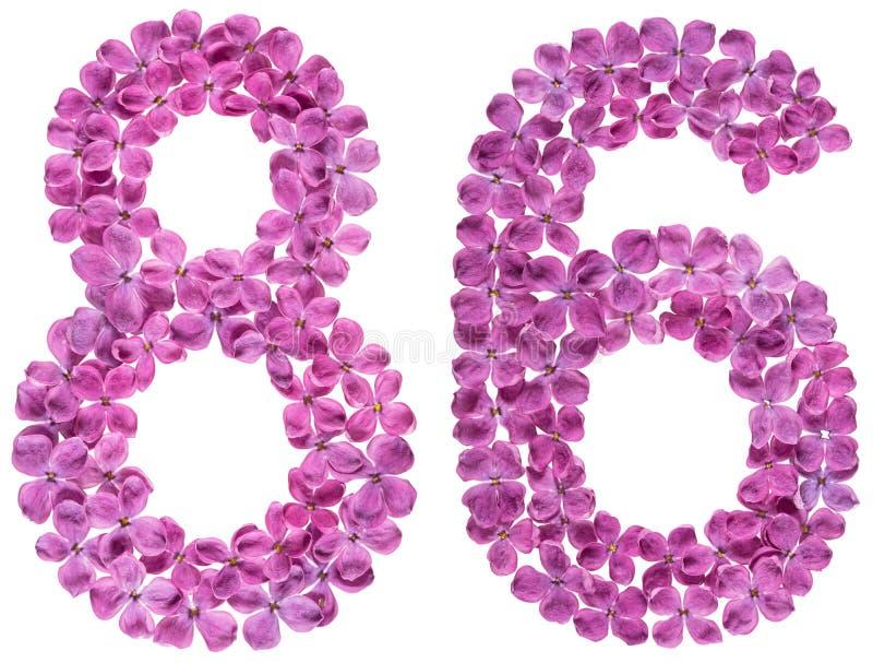O numeral árabe 86, oitenta e seis, das flores do lilás, isolou o imagens de stock royalty free