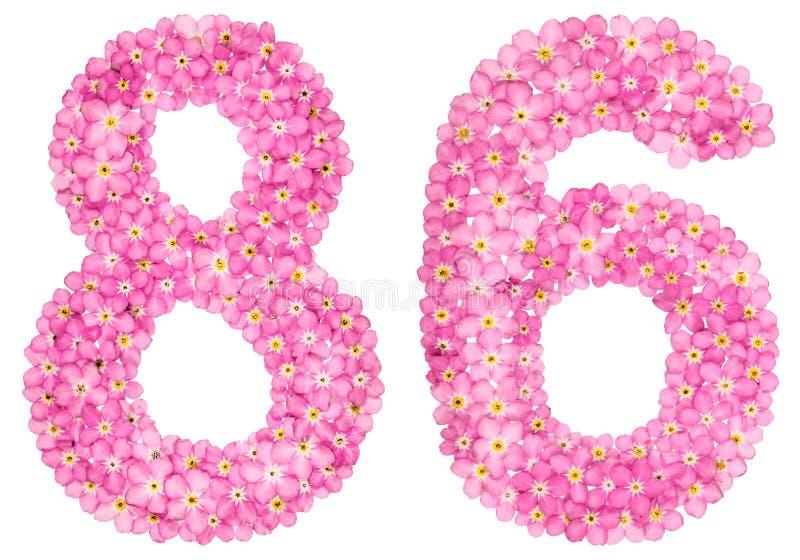 O numeral árabe 86, oitenta e seis, do miosótis cor-de-rosa floresce, fotografia de stock royalty free