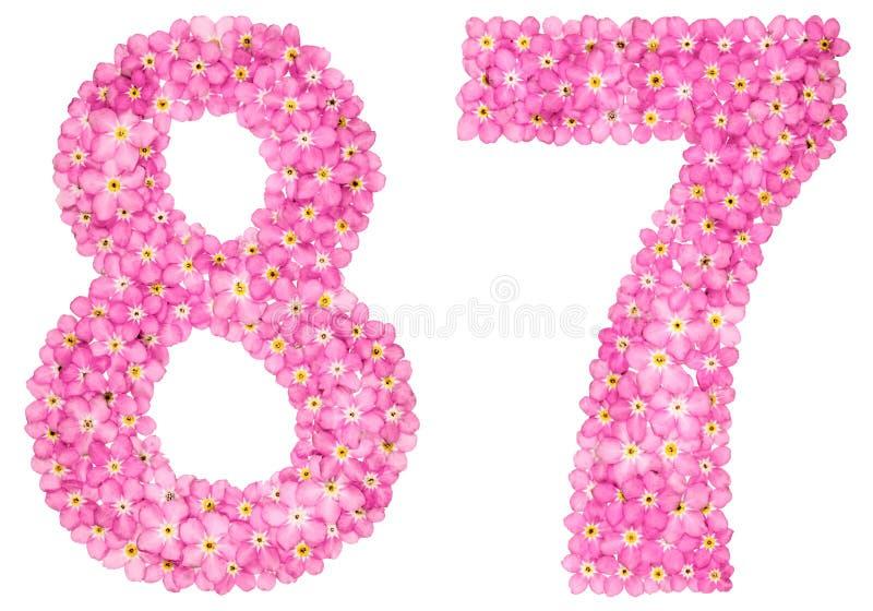 O numeral árabe 87, oitenta e sete, do miosótis cor-de-rosa floresce fotografia de stock
