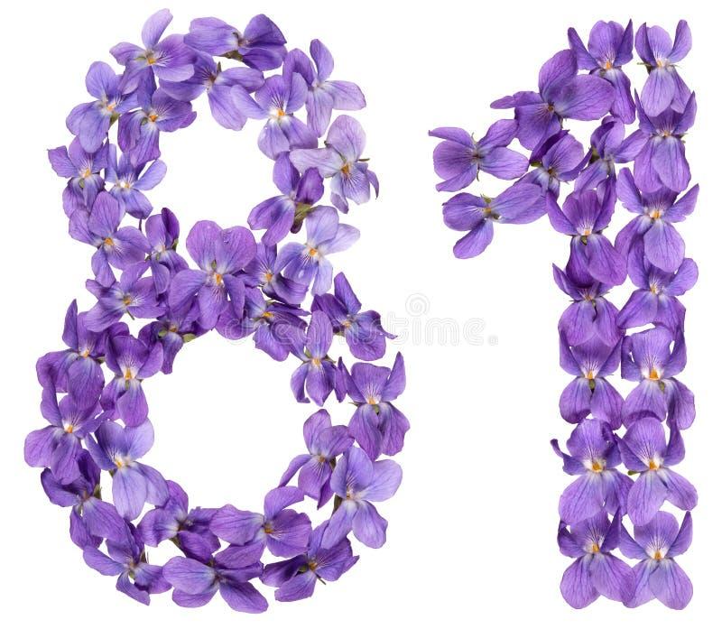 O numeral árabe 81, oitenta uns, das flores da viola, isolou o imagens de stock