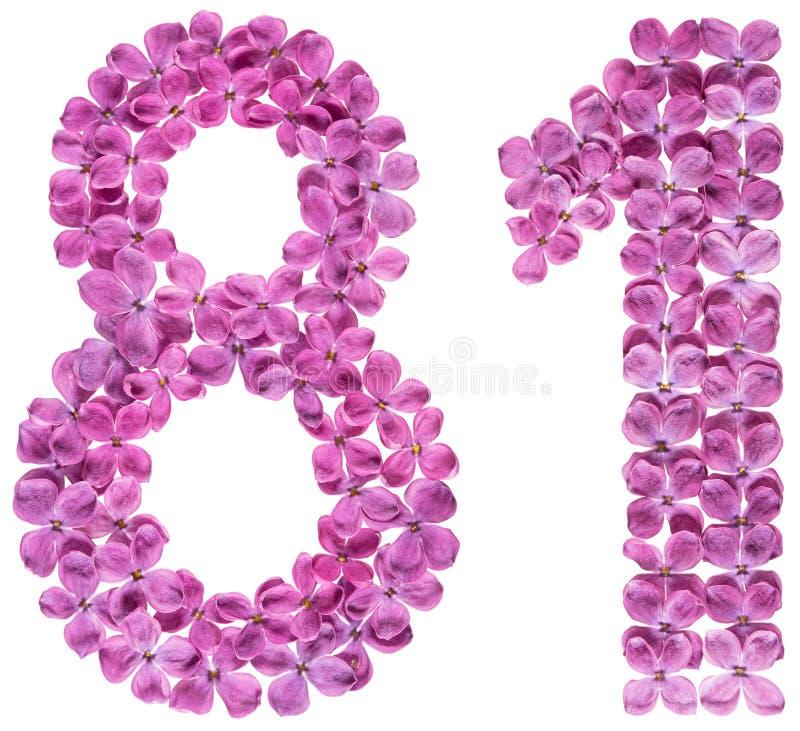 O numeral árabe 81, oitenta uns, das flores do lilás, isolou o fotos de stock