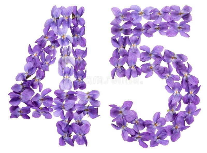 O numeral árabe 45, quarenta e cinco, das flores da viola, isolou o imagem de stock royalty free
