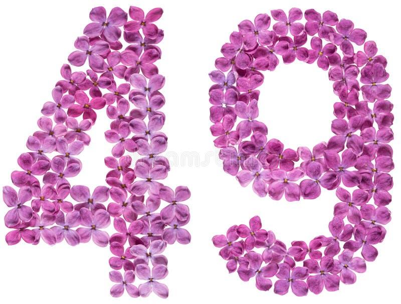 O numeral árabe 49, quarenta e nove, das flores do lilás, isolou o fotos de stock