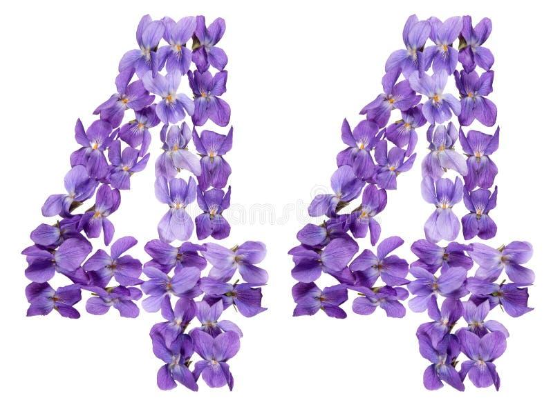 O numeral árabe 44, quarenta e quatro, das flores da viola, isolou o foto de stock royalty free