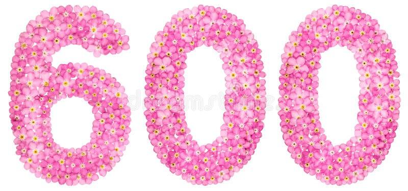 O numeral árabe 600, seis cem, do miosótis cor-de-rosa floresce imagem de stock royalty free