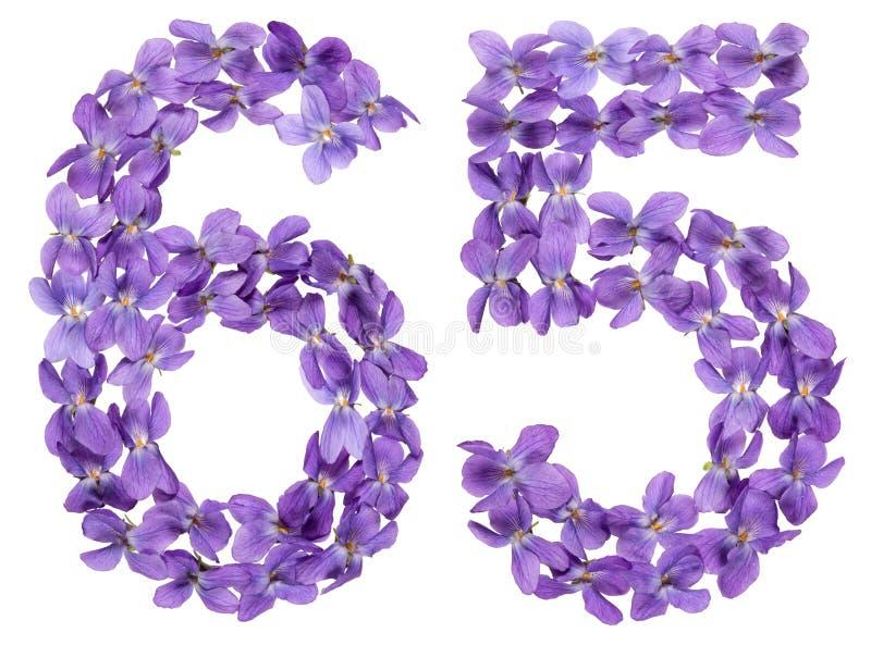 O numeral árabe 65, sessenta e cinco, das flores da viola, isolou o imagens de stock royalty free