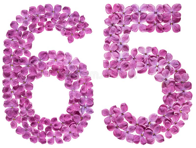 O numeral árabe 65, sessenta e cinco, das flores do lilás, isolou o foto de stock royalty free