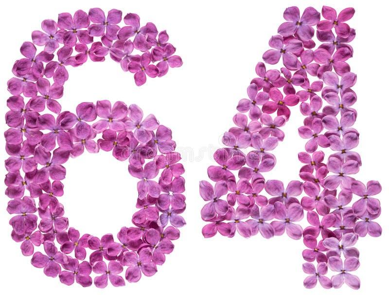O numeral árabe 64, sessenta e quatro, das flores do lilás, isolou o fotos de stock