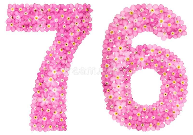 O numeral árabe 76, setenta seis, do miosótis cor-de-rosa floresce, imagem de stock royalty free
