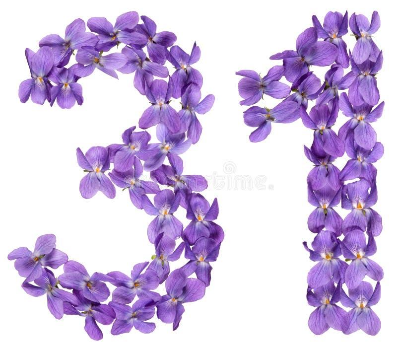 O numeral árabe 31, trinta uns, das flores da viola, isolou o imagem de stock royalty free