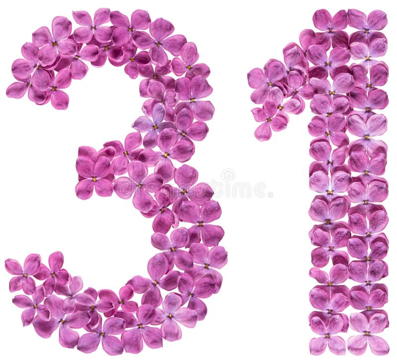 O numeral árabe 31, trinta uns, das flores do lilás, isolou o fotografia de stock royalty free