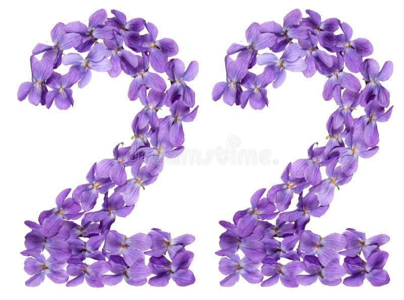 O numeral árabe 22, vinte e dois, das flores da viola, isolou o imagem de stock