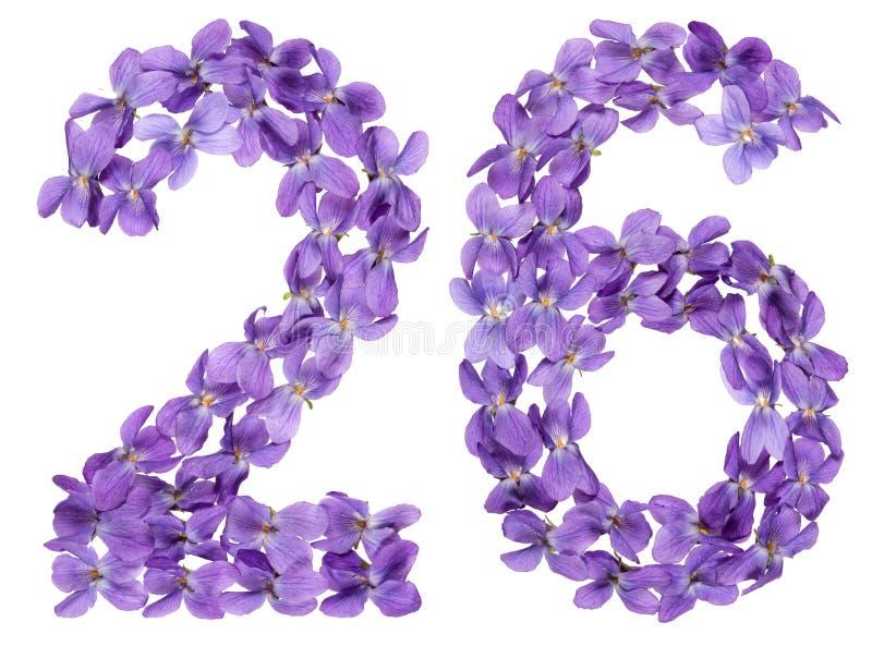 O numeral árabe 26, vinte e seis, das flores da viola, isolou o imagens de stock royalty free