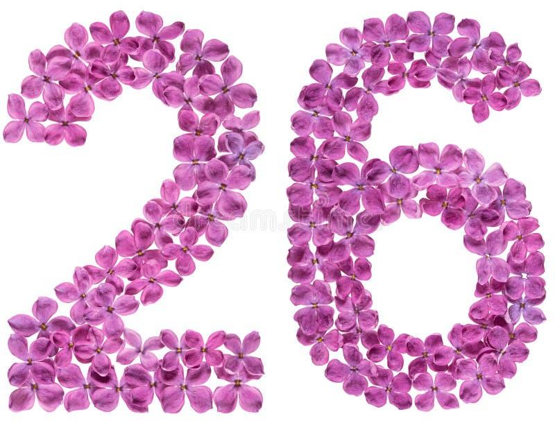 O numeral árabe 26, vinte e seis, das flores do lilás, isolou o fotografia de stock