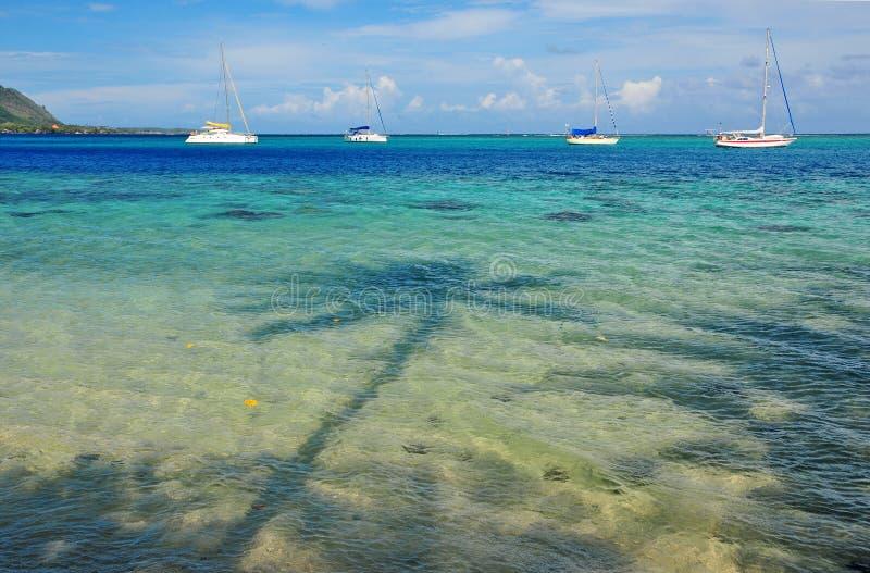 O oceano de turquesa fora de Moorea, Tahiti, francês Ploynesia fotografia de stock royalty free