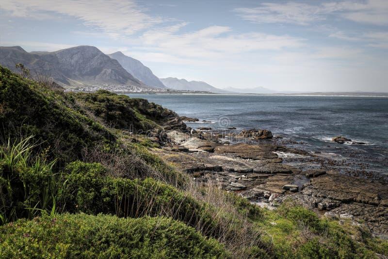 O oceano e a costa ajardinam em Hermanus, África do Sul fotografia de stock royalty free