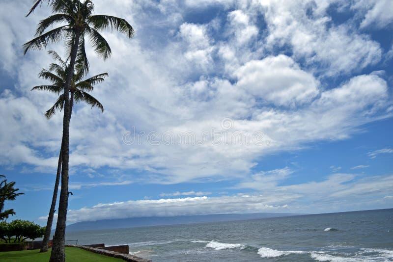 O oceano e o céu azuis com as palmas de balanço ao longo de Maui's ocidental Kaanapali famoso encalham, Havaí, EUA foto de stock royalty free