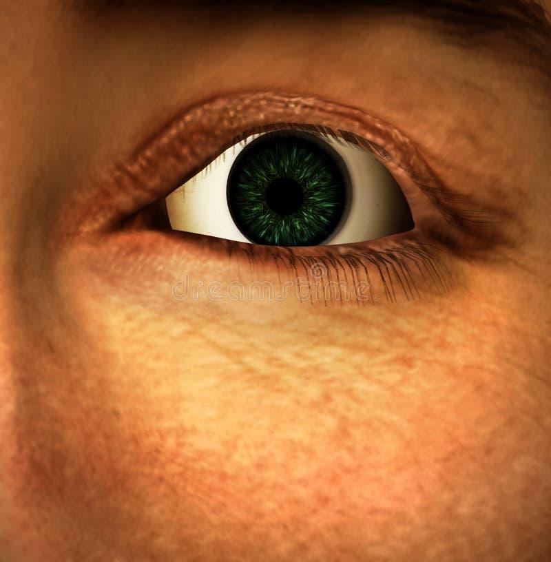 O olho ilustração do vetor