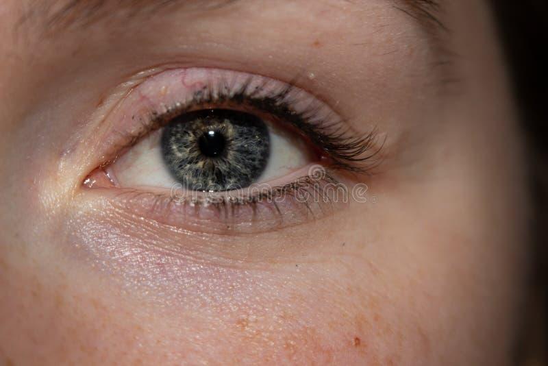 O olho da mulher azul do olhar perspicaz bonito original fotografia de stock royalty free