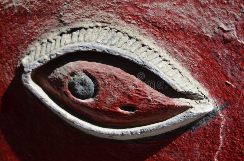 O olho observador fotos de stock