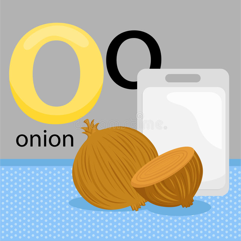 O for onion royalty free illustration