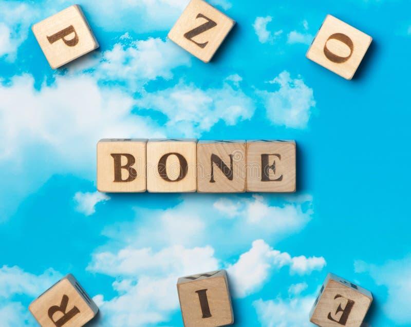 O osso da palavra imagem de stock