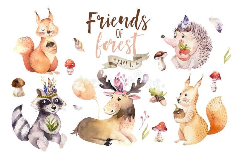 O ouriço dos desenhos animados do bebê da aquarela bonito, o esquilo e o animal boêmios para nursary, floresta dos alces isolaram ilustração do vetor