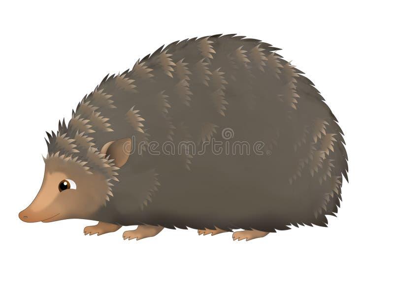 O ouriço dos desenhos animados - ilustração para as crianças ilustração royalty free
