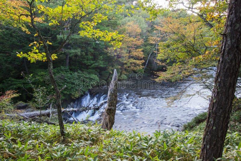 O outono adiantado em Ryuzu cai, Nikko, prefeitura de Tochigi, Japão fotografia de stock