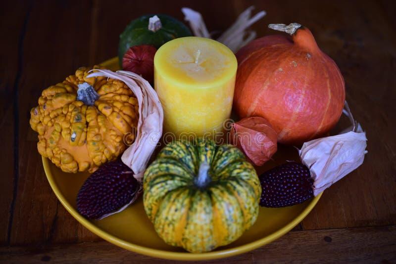 O outono inspirou ainda a vida com abóbora & cabaças fotografia de stock royalty free