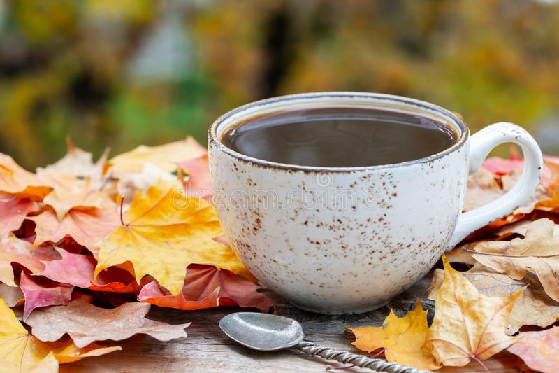 O outono, queda sae, xícara de café cozinhando quente no fundo de madeira da tabela Sazonal, café da manhã, domingo que relaxa fotografia de stock royalty free