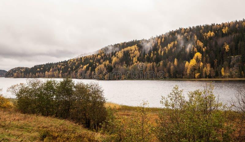 O outono vem A correia da floresta Costa do lago Árvores amarelas fotos de stock